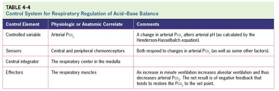 2.3 Respiratory Regulation of Acid-Base Balance -continued